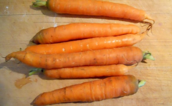 Number of carrots I have!)